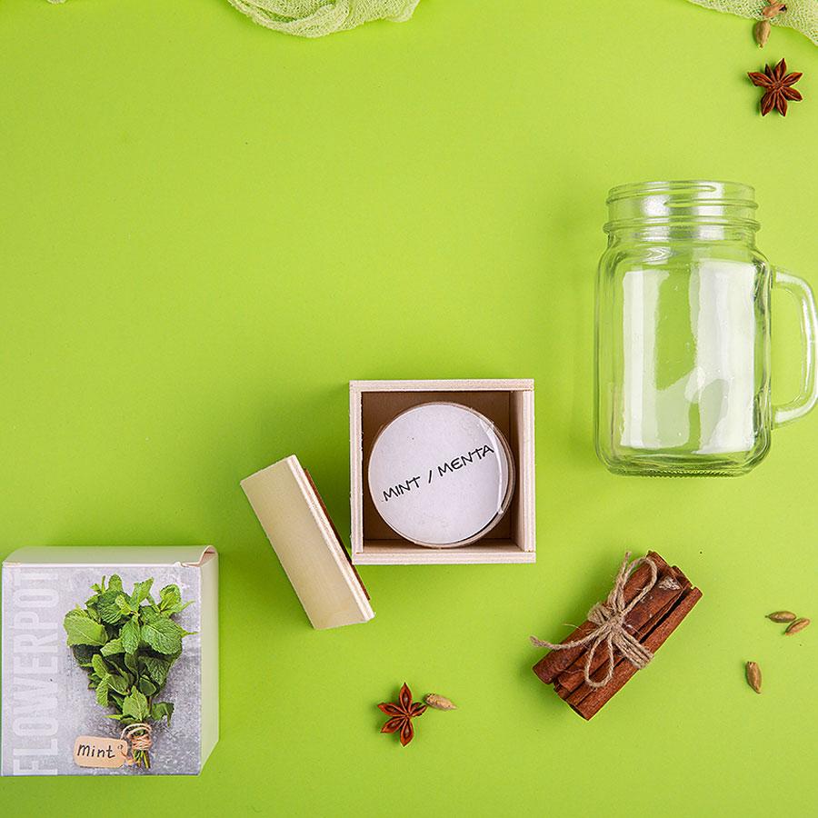 Набор подарочный PARTYMAKER: кружка-банка, горшочек для выращивания мяты, коробка, стружка